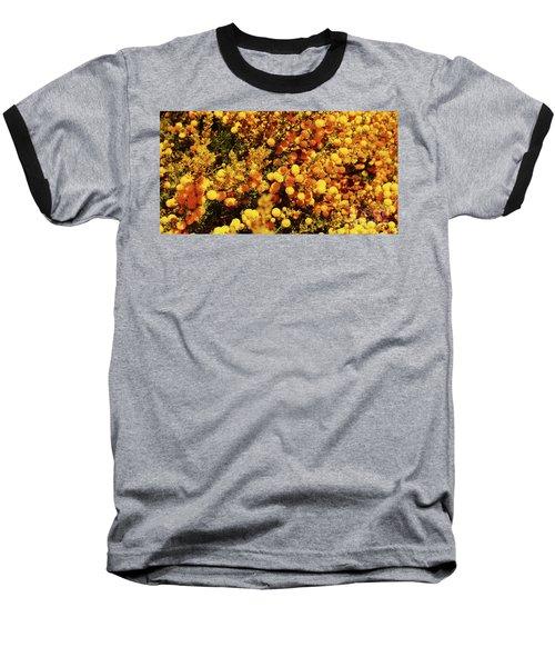 Prickly Moses Baseball T-Shirt by Cassandra Buckley