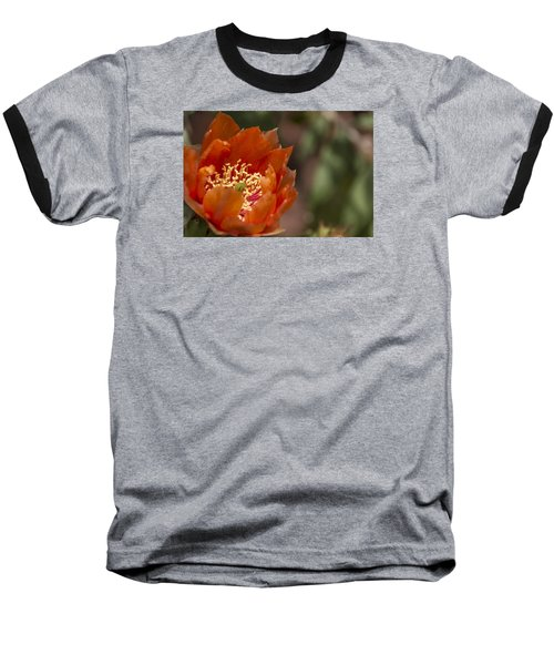 Baseball T-Shirt featuring the photograph Prickly Pear Bloom by Laura Pratt