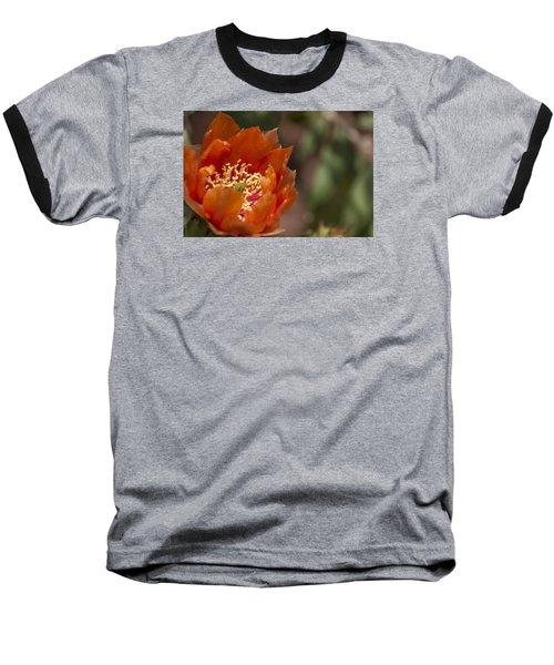 Prickly Pear Bloom Baseball T-Shirt by Laura Pratt