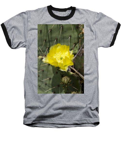 Prickly Pear Cactus Blossom - Opuntia Littoralis Baseball T-Shirt