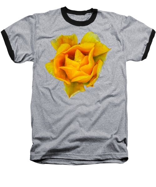 Prickly Pear Flower H11 Baseball T-Shirt by Mark Myhaver