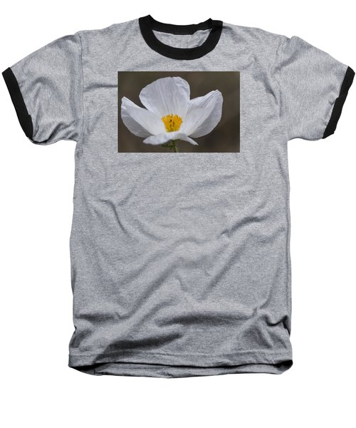 Prickly Poppy Baseball T-Shirt by Laura Pratt