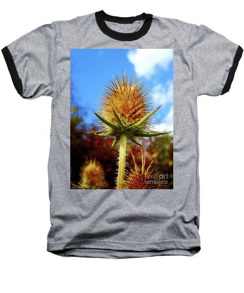 Baseball T-Shirt featuring the photograph Prickly Thistle by Nina Ficur Feenan