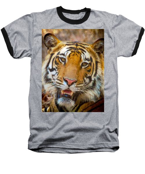 Prime Tiger Baseball T-Shirt by David Beebe