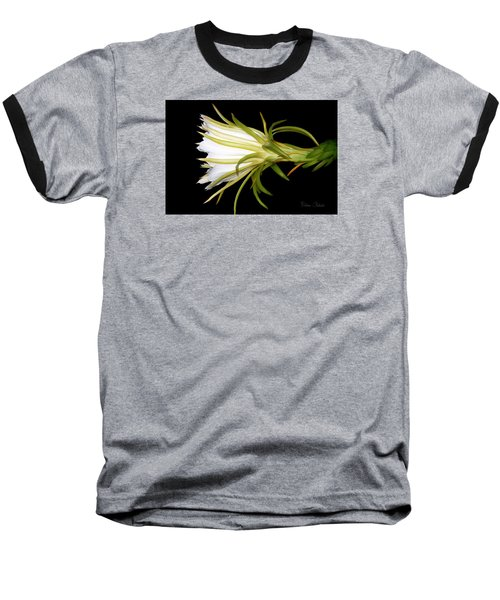 Profile Night Blooming Cereus Baseball T-Shirt by Barbara Chichester