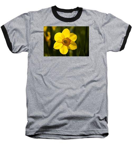 Projecting The Sun Baseball T-Shirt by Dan Hefle