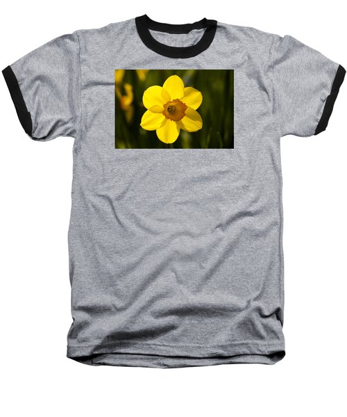 Projecting The Sun Baseball T-Shirt