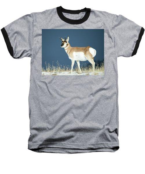 Pronghorn Baseball T-Shirt