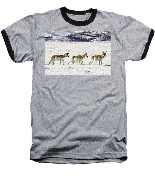 Pronghorns Baseball T-Shirt
