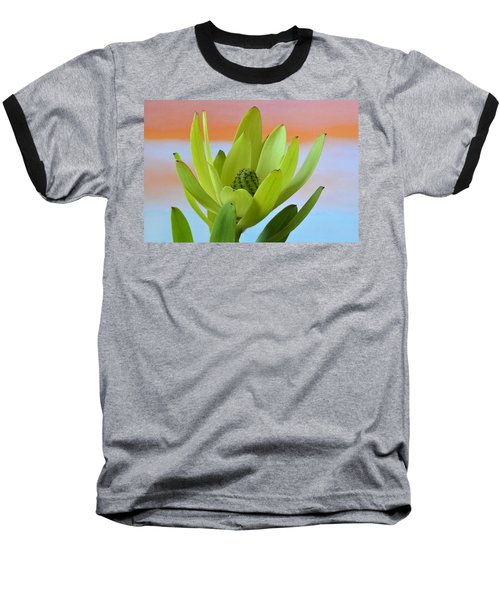 Protea Gold Strike. Baseball T-Shirt by Terence Davis