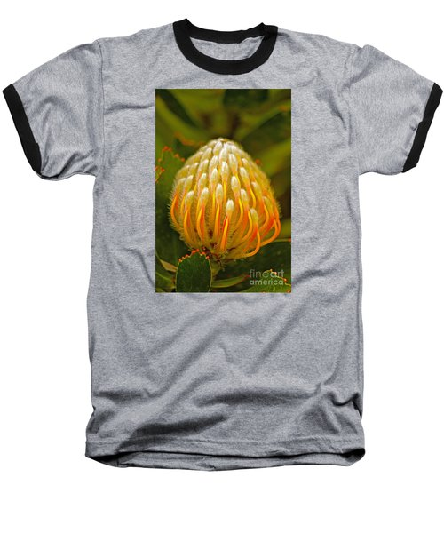 Proteas Ready To Blossom  Baseball T-Shirt