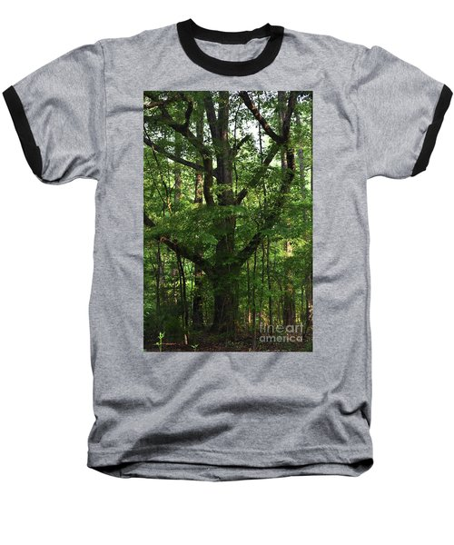 Baseball T-Shirt featuring the photograph Protecting The Children by Skip Willits