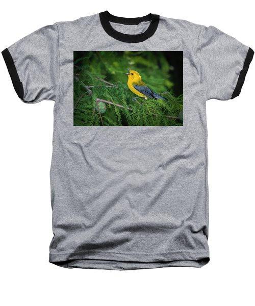 Prothonatory Warbler 9809 Baseball T-Shirt