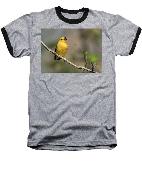 Prothonotary Warbler Singing Baseball T-Shirt