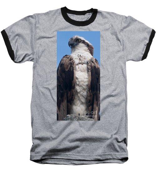 Proud Hawk Baseball T-Shirt