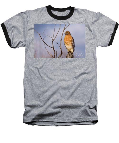 Proud Profile Baseball T-Shirt by Charles Hite