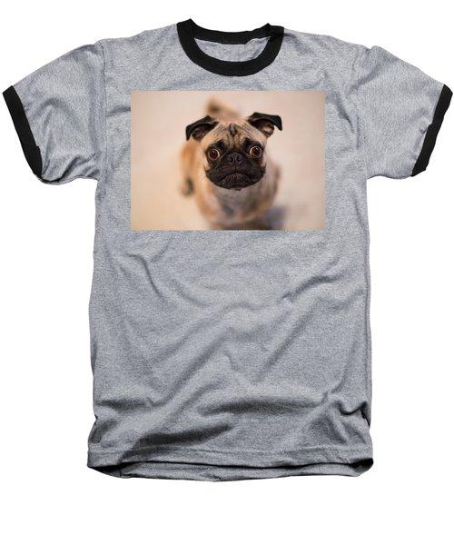 Baseball T-Shirt featuring the photograph Pug Dog by Laura Fasulo