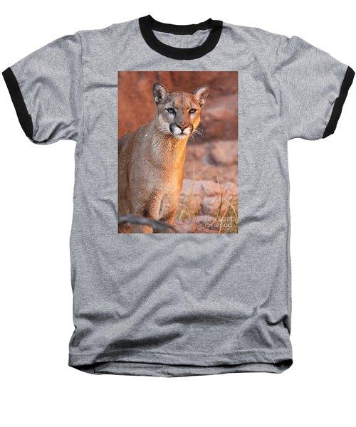 Puma At Sunset Baseball T-Shirt