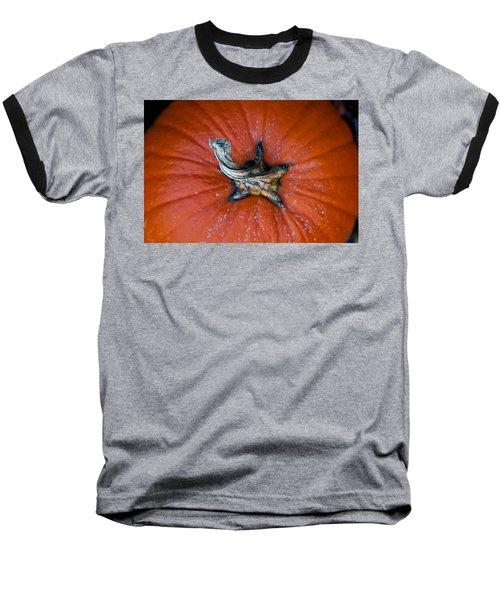 Pumpkin Stalk Baseball T-Shirt