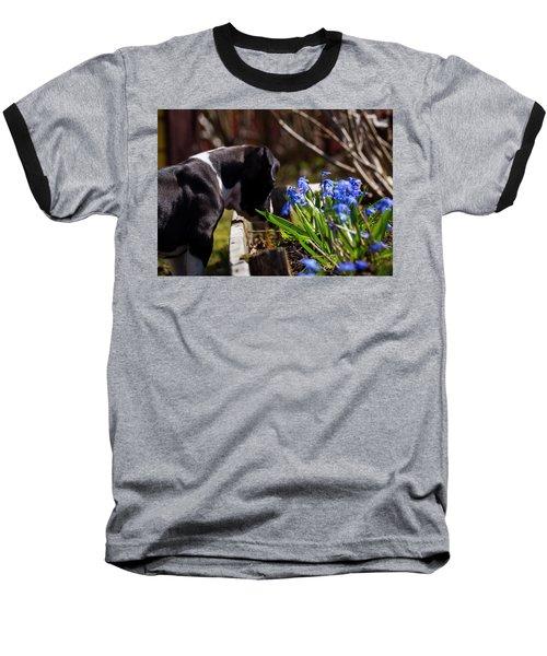 Puppy And Flowers Baseball T-Shirt by Tamara Sushko