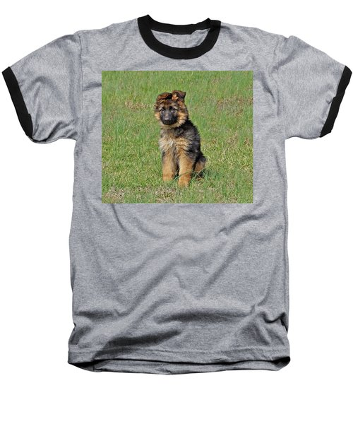 Baseball T-Shirt featuring the photograph Puppy Halo by Sandy Keeton