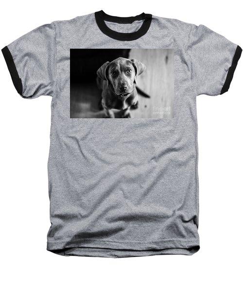 Puppy - Monochrome 1 Baseball T-Shirt