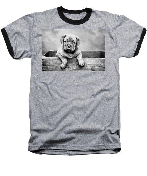 Puppy - Monochrome 3 Baseball T-Shirt
