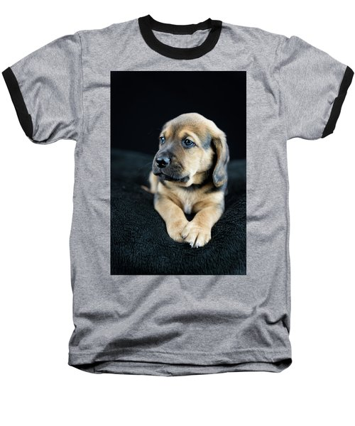 Puppy Portrait Baseball T-Shirt