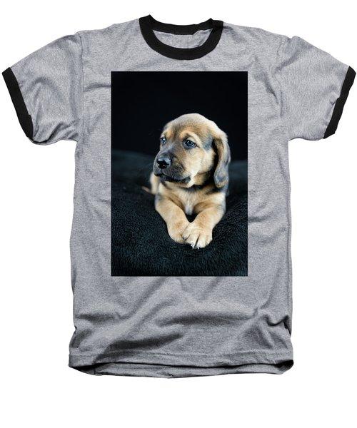 Puppy Portrait Baseball T-Shirt