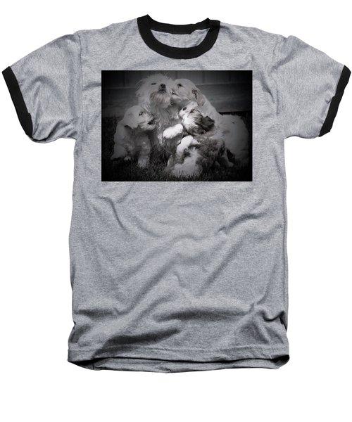 Puppy Vignette Baseball T-Shirt