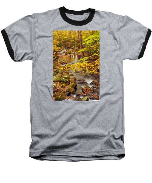 Baseball T-Shirt featuring the photograph Pure Gold by Debbie Green