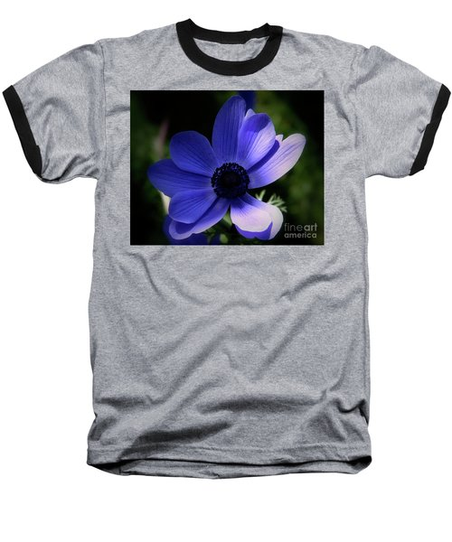 Purple Anemone Baseball T-Shirt by Stephen Melia