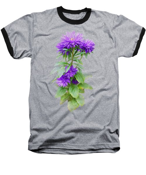 Purple Aster Baseball T-Shirt by Ivana