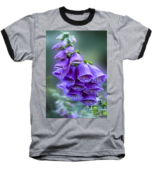 Purple Bell Flowers Foxglove Flowering Stalk Baseball T-Shirt by Carol F Austin