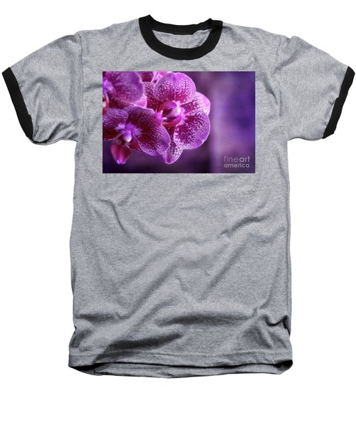 Purple Bunch Baseball T-Shirt