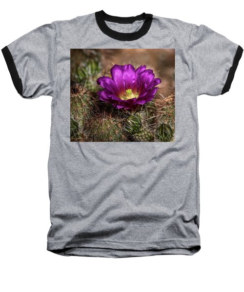 Baseball T-Shirt featuring the photograph Purple Cactus Flower  by Saija Lehtonen