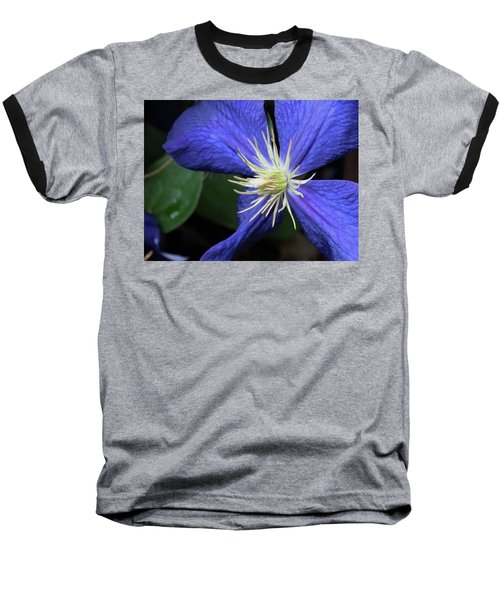 Purple Clematis Baseball T-Shirt by Rebecca Overton