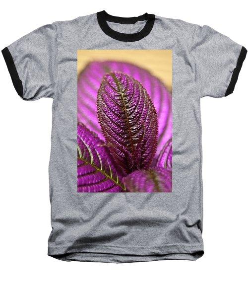 Purple Coleus Baseball T-Shirt by Carolyn Marshall
