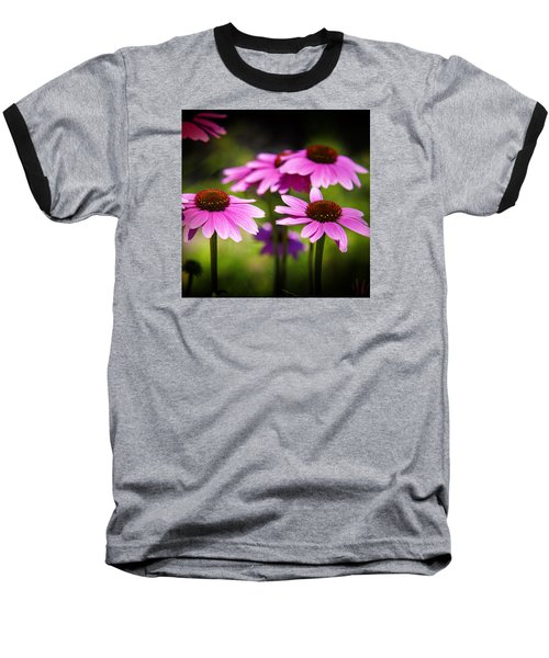 Purple Coneflowers Baseball T-Shirt by Milena Ilieva
