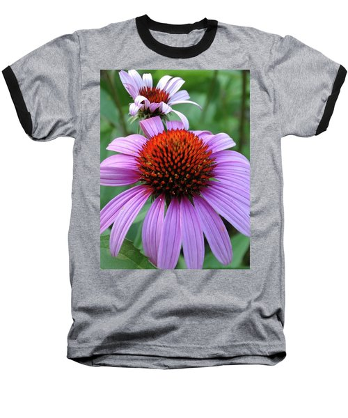 Purple Coneflowers Baseball T-Shirt by Rebecca Overton
