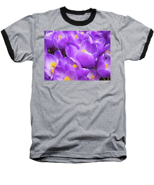 Purple Crocuses Baseball T-Shirt