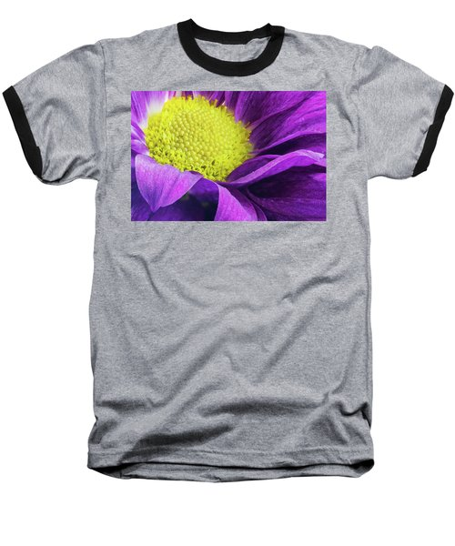 Purple Daisy In The Garden Baseball T-Shirt