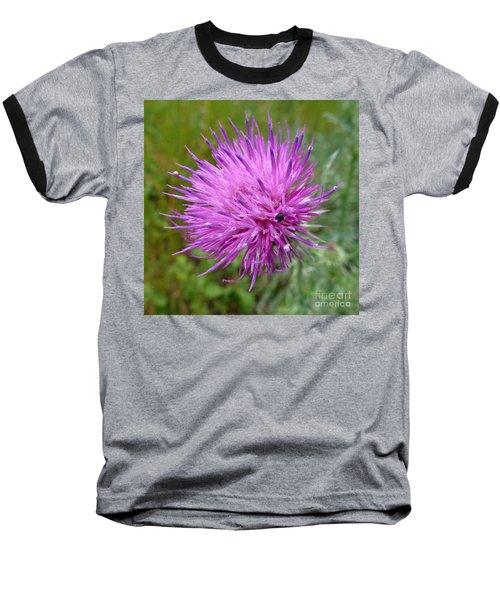 Purple Dandelions 2 Baseball T-Shirt