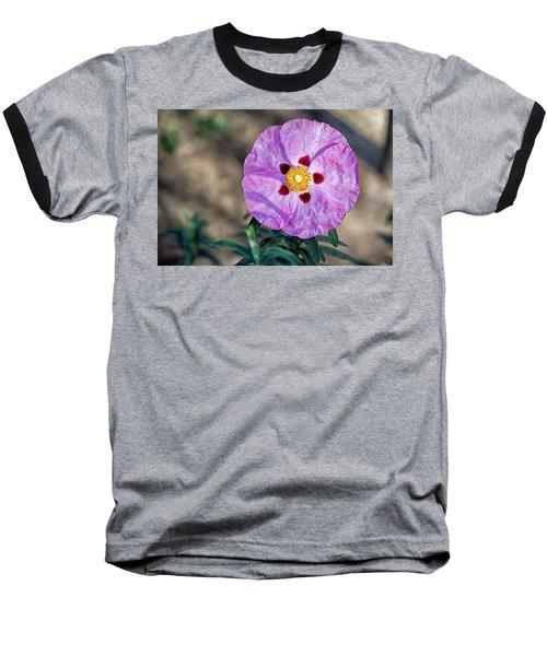 Purple Rockrose Baseball T-Shirt