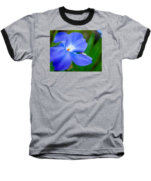Morning Glory Baseball T-Shirt