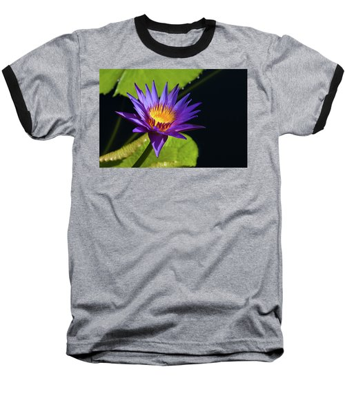 Baseball T-Shirt featuring the photograph Purple Gold by Steve Stuller