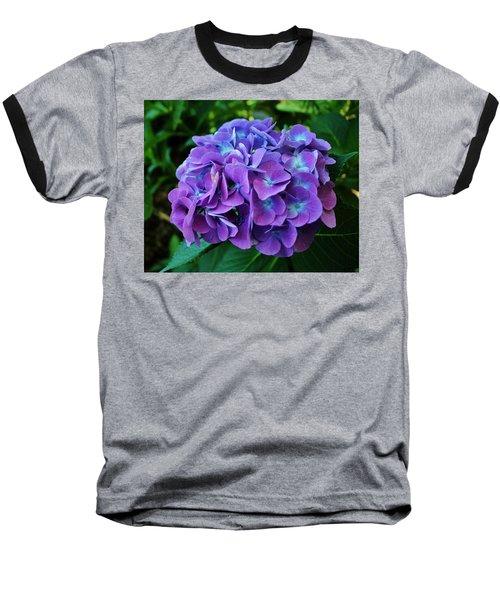 Purple Hydrangea Baseball T-Shirt