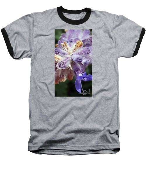 Purple Iced Blue New Mexico Wildflower Baseball T-Shirt