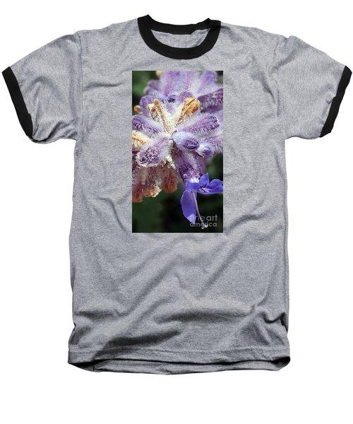 Purple Iced Blue New Mexico Wildflower Baseball T-Shirt