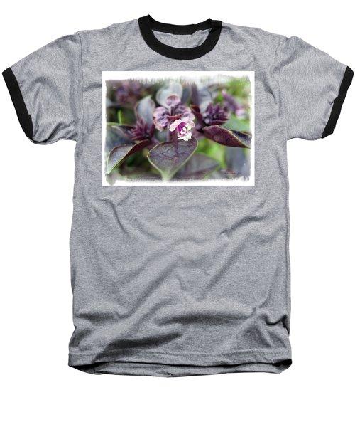 Baseball T-Shirt featuring the photograph Purple In Autumn by Joan  Minchak